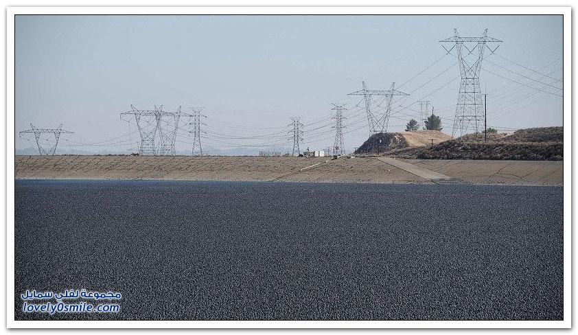 96 مليون كرة بلاستيكية صغيرة.. وسيلة أمريكا للحد من الجفاف