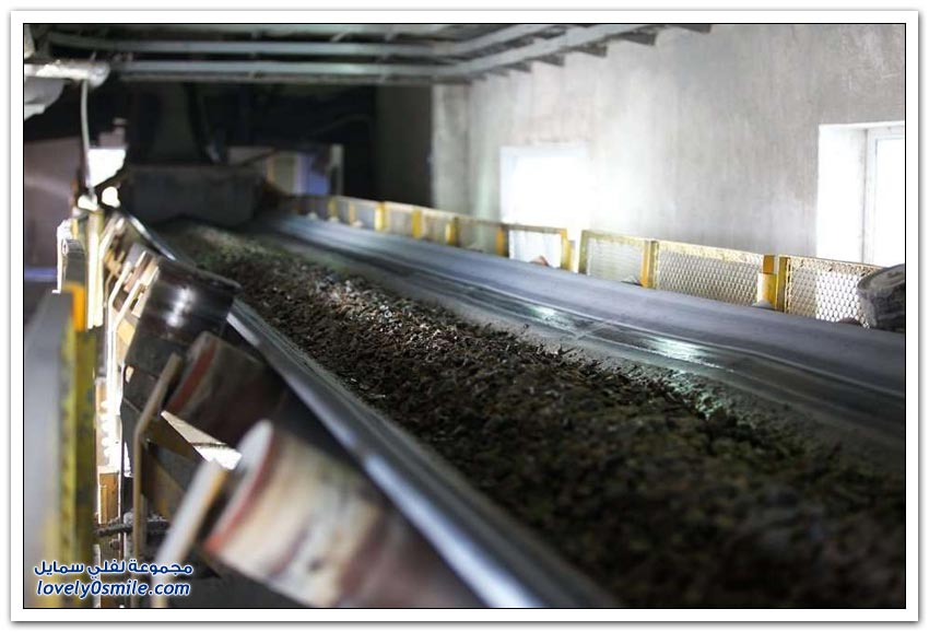 كيفية استخراج الذهب في كازاخستان