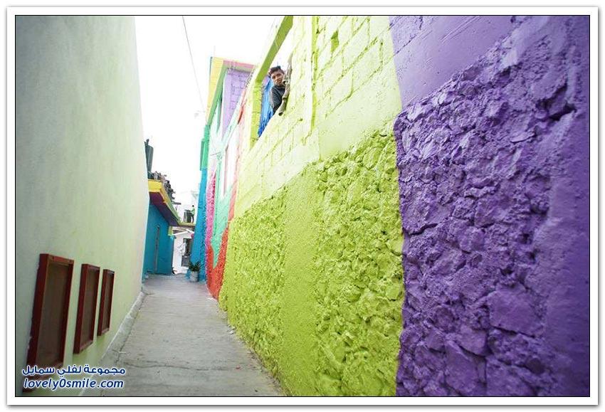 الحكومة المكسيكية تطلب من فناني الشوارع طلاء 200 منزل في إحدى البلدات