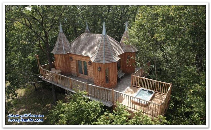 منازل بُنيت على الأشجار
