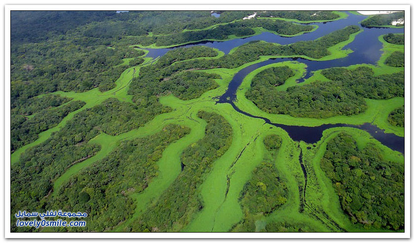 أجمل أرخبيل في البرازيل