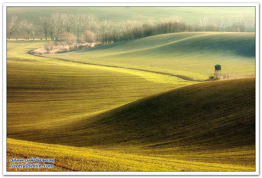 الحقول الساحرة في جمهورية التشيك