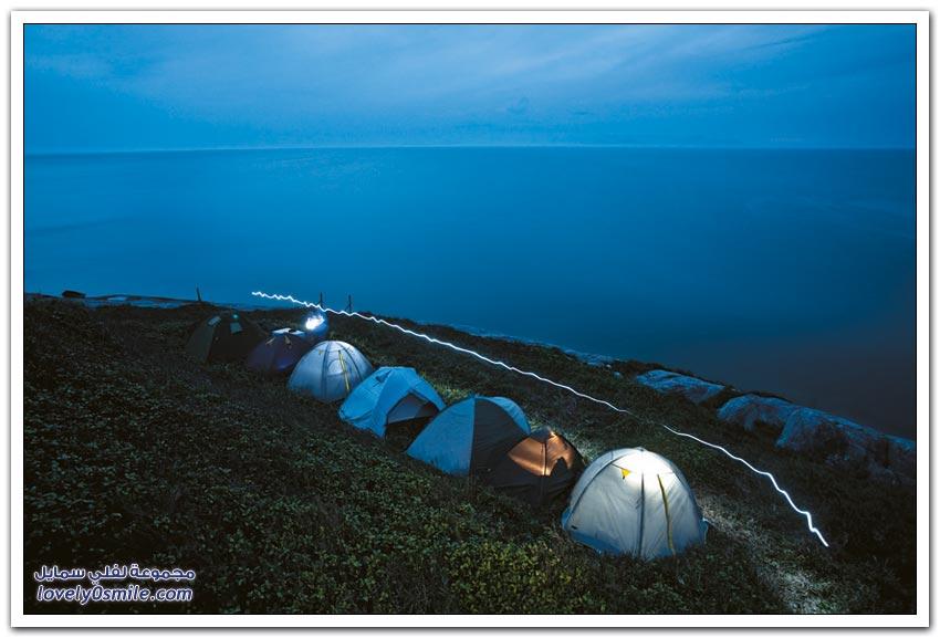 جزيرة الثعابين إيلا كيمادا غراندي البرازيلية