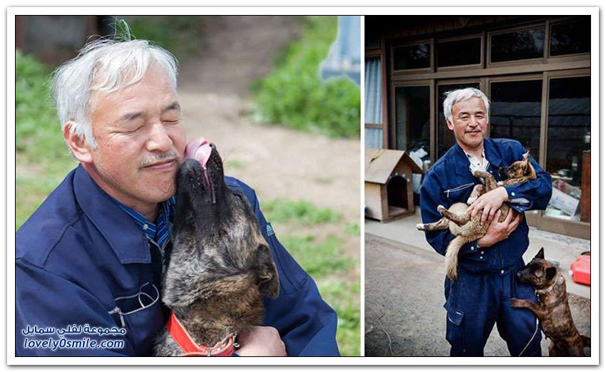 ياباني يقيم وحيداً في منطقة مشعة لإطعام الحيوانات