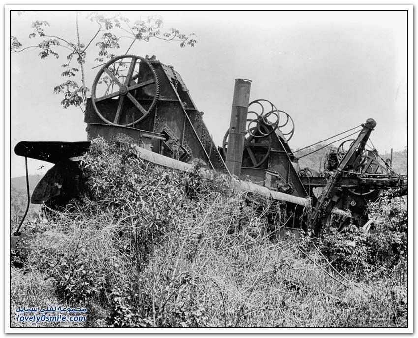 صور نادرة لبناء قناة بنما 1881-1914م