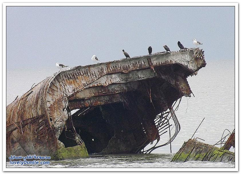 سفن مصنوعة من الخرسانة
