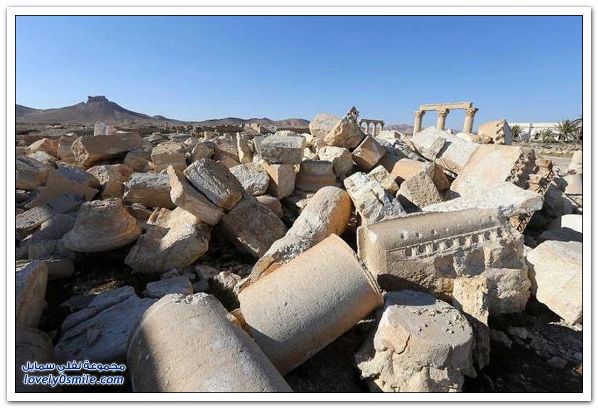 مدينة تدمر التاريخية السورية بين الماضي والحاضر