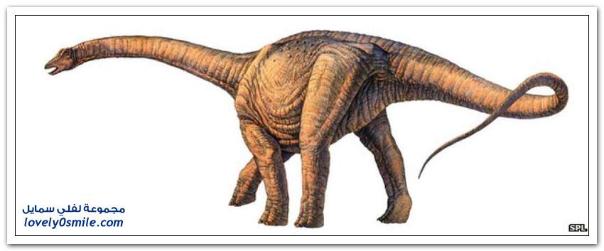 اكتشاف أكبر ديناصور في العالم بحجم طائرة بوينغ 737