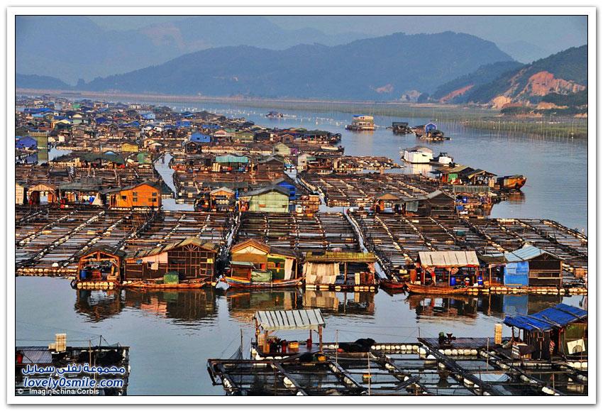 مزارع الأسماك العائمة في الصين