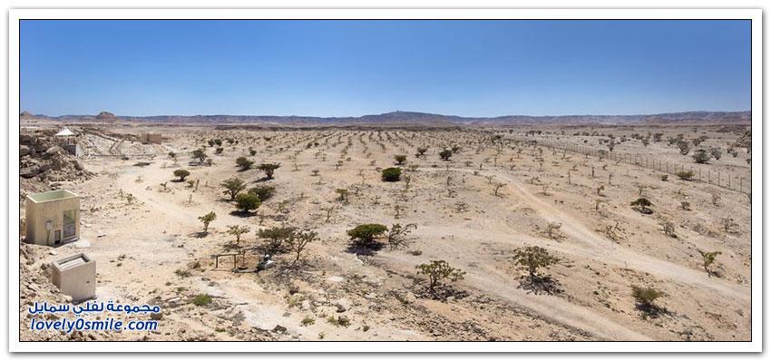 وادي دوكة أرض اللبان
