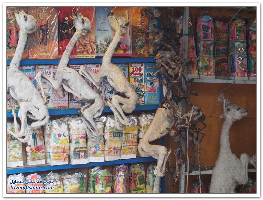 سوق السحرة في منطقة لاباز في بوليفيا