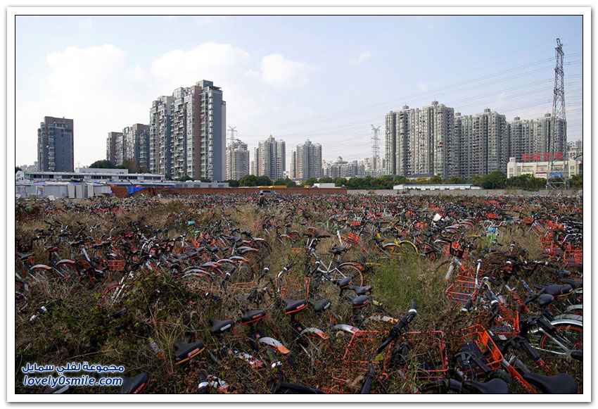 أكوام ضخمة من الدراجات الهوائية المهجورة في الصين
