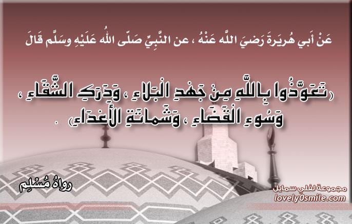 تعوذوا بالله من جهد البلاء ودرك الشقاء وسوء القضاء وشماتة الأعداء