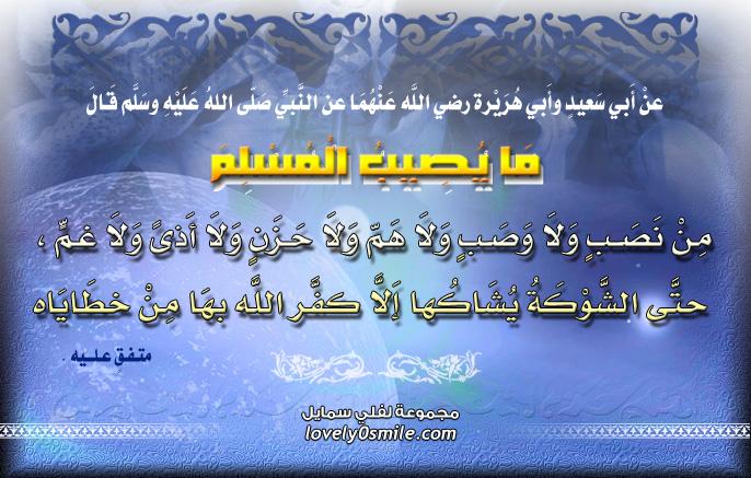 ما يصيب المسلم من نصب ولا وصب ولا هم ولا حزن ولا أذى ولا غم حتى الشوكة