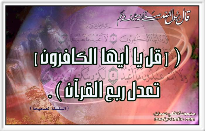 فضل سورة الكافرون : قل يا أيها الكافرون تعدل ربع القرآن