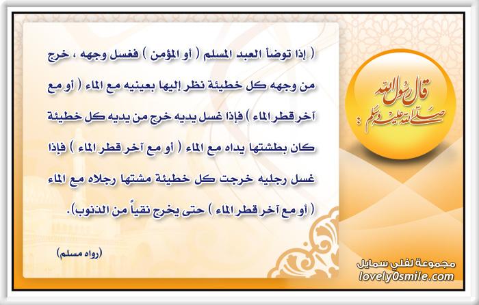 فضل الوضوء: إذا توضأ العبد المسلم أو المؤمن فغسل وجهه خرج من وجهه كل خطيئة نظر إليها