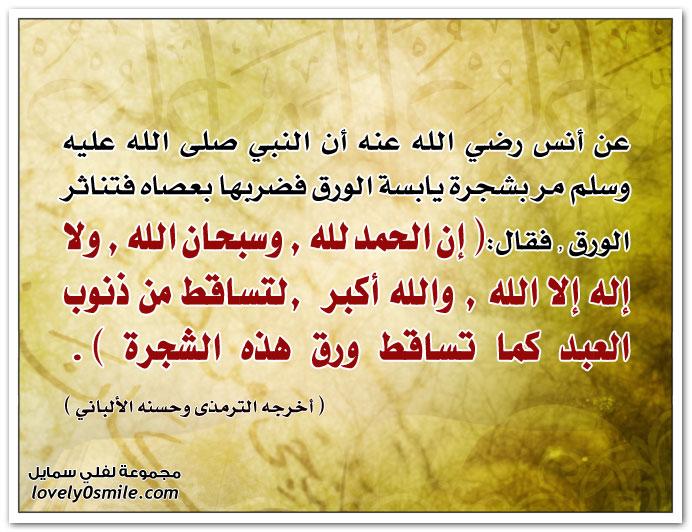 أن النبي صلى الله عليه وسلم مر بشجرة يابسة الورق فضربها بعصاه فتناثر الورق فقال: إن الحمد لله