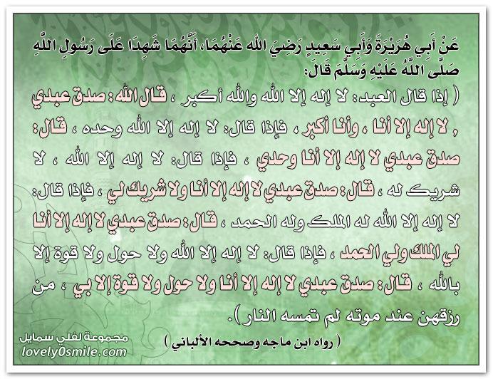 إذا قال العبد: لا إله إلا الله والله أكبر قال الله: صدق عبدي لا إله إلا أنا وأنا أكبر