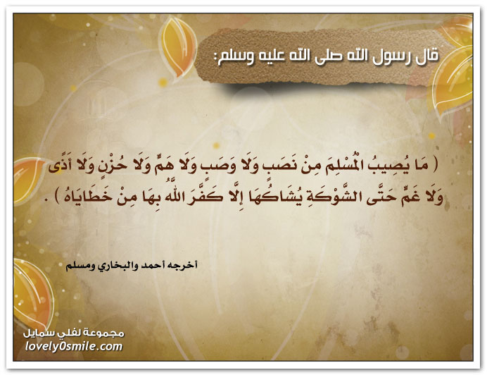 ما يصيب المسلم من نصب ولا وصب ولا هم ولا حزن ولا أذى ولا غم حتى الشوكة يشاكها إلا كفر الله بها من خطاياه