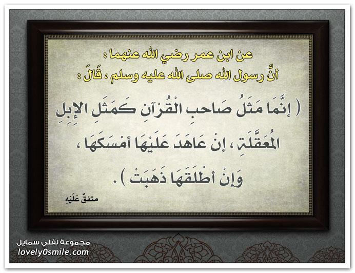 إنما مثل صاحب القرآن كمثل الإبل المعقلة إن عاهد عليها أمسكها وإن أطلقها ذهبت