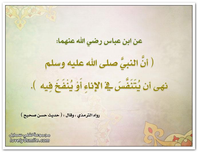 أن النبي صلى الله عليه وسلم نهى أن يُتنفس في الإناء أو يُنفخ فيه