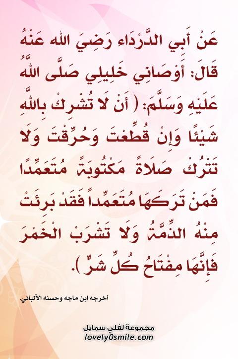 عن أبي الدرداء قال: أوصاني خليلي عليه السلام: أن لا تشرك بالله شيئاً وإن قُطعت وحُرقت ولا تترك صلاة مكتوبة