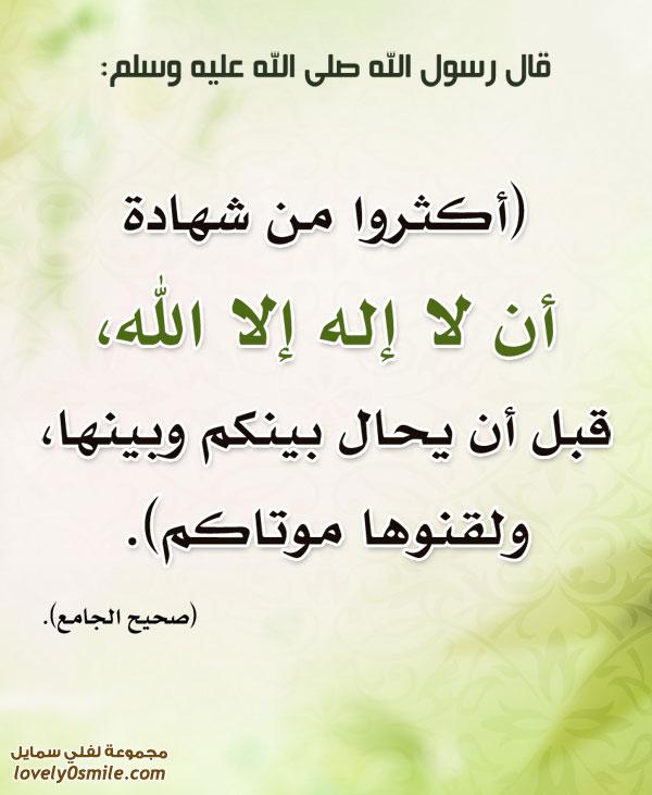 أكثروا من شهادة أن لا إله إلا الله قبل أن يُحال بينكم وبينها