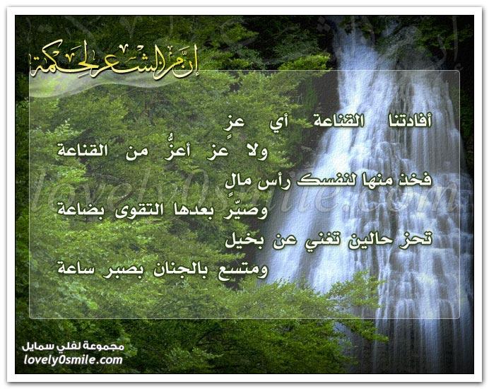 أفادتنا القناعة أي عز ولا عز أعز من القناعة .. فخذ منها لنفسك رأس مال وصير بعدها