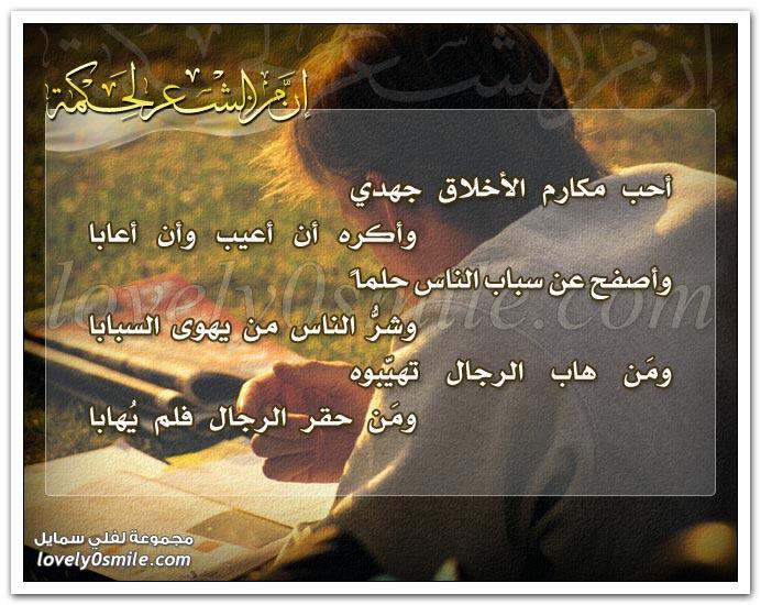 أحب مكارم الأخلاق جهدي وأكره إن أعيب وأن أعابا .. وأصفح عن سباب الناس حلما وشر الناس