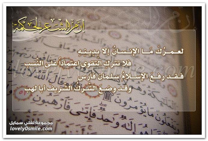 لعمرك ما الإنسان إلا بدينه فلا تترك التقوى اعتماداً على النسب .. فقد رفع الإسلام سلمان