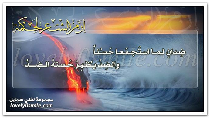 ضِدانِ لمّا استَجمَعا حَسُنا والضِدّ يُظْهِرُ حُسْنَهُ الضِدُّ
