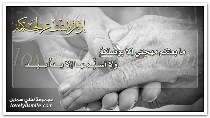 ما بعتكم مهجتي إلا بوصلكم ولا أسلِّمها إلا يداً بيد