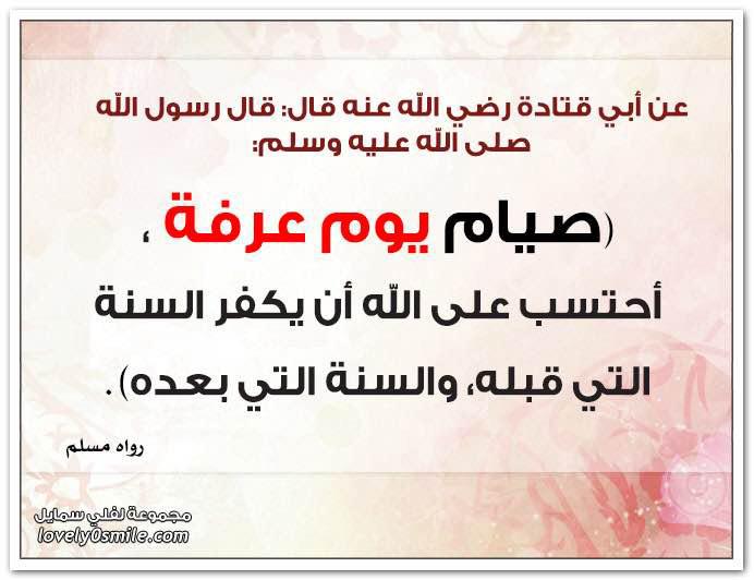 ashr_tho_alhija-05.jpg