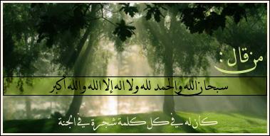 من قال: سبحان الله والحمد لله ولا إله إلا الله والله أكبر. كان له في كل كلمة شجرة
