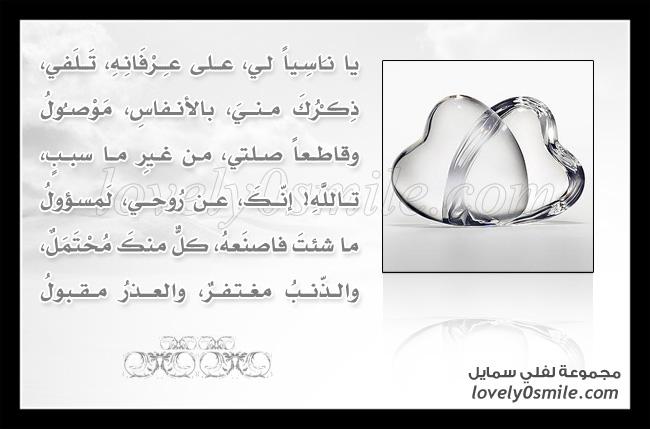 قصائد الغزل بلغة أصحاب المهن - مدرس رياضيات -راعي غنم - P113