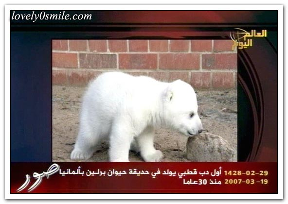 العالم اليوم 19-3-2007 / صور