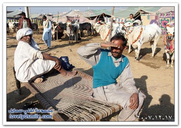 العالم اليوم 16,17-12-2007 / صور