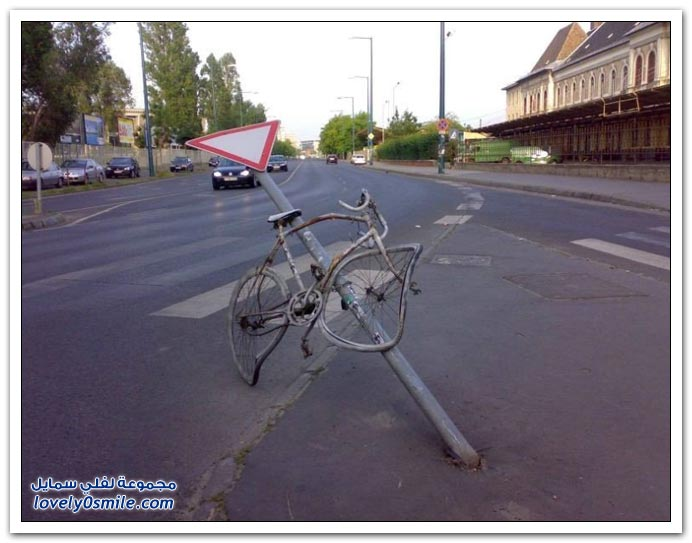 صور هواة ركوب الدراجات