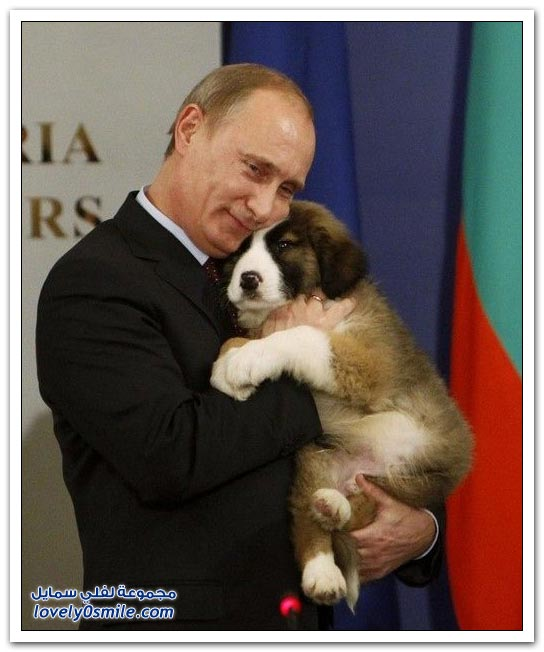 فلاديمير بوتين وحبه للحيوانات
