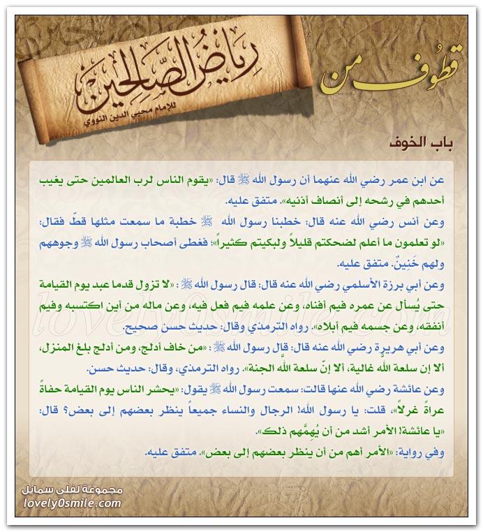 إجراء أحكام الناس على الظاهر وسرائرهم إلى الله تعالى + الخوف