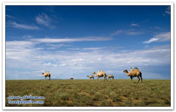 صور لمناظر من الطبيعة في كازاخستان