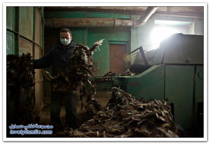 أحد مصانع الأحذية في روسيا