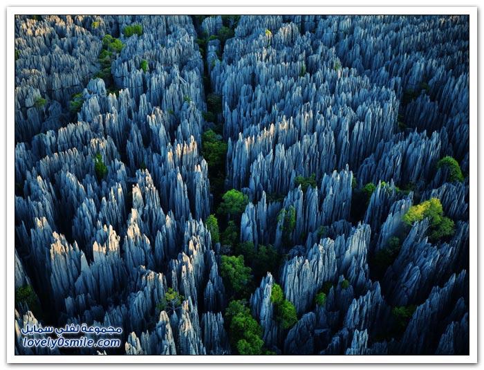 أفضل الصور من ناشيونال جيوغرافيك لشهر مارس