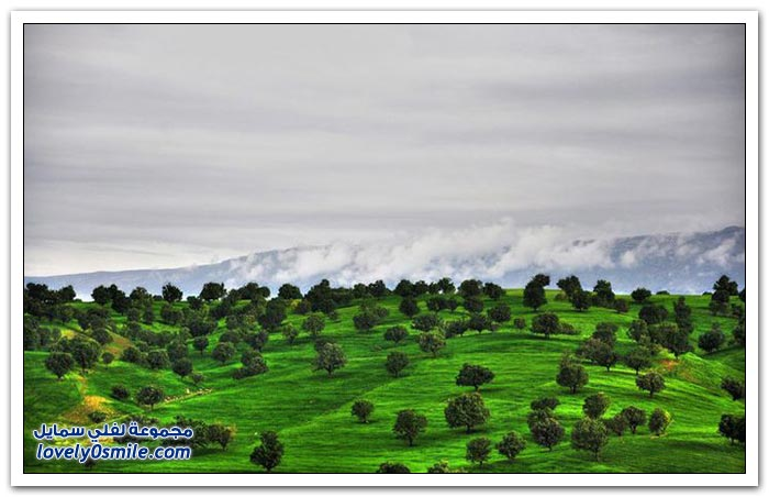 صور من الطبيعة في إيران