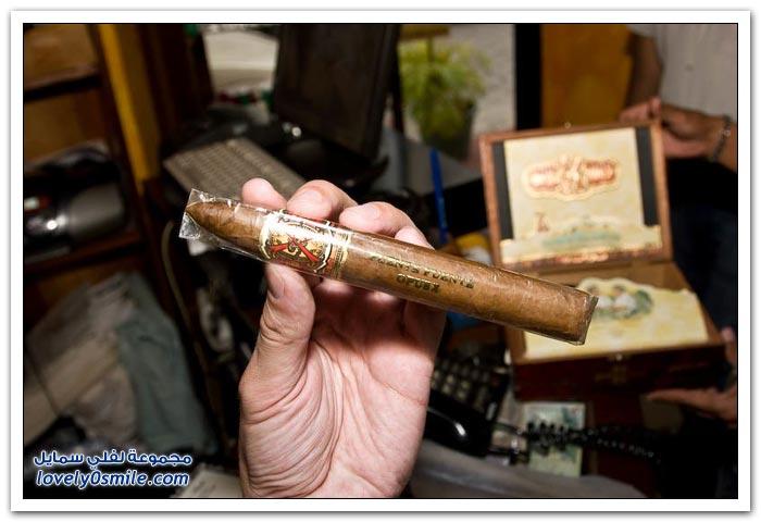 إنتاج السيجار في جمهورية الدومنيكان