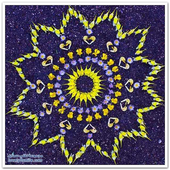أشكال مكونة بالأزهار الرائعة