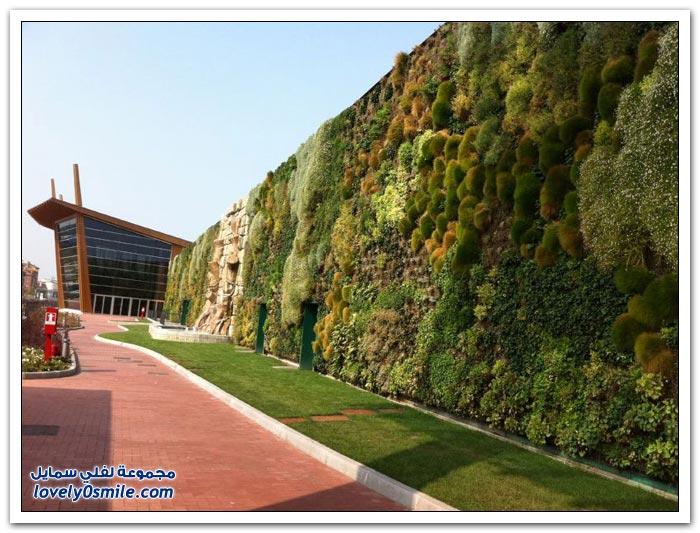 أكبر حديقة عمودية في العالم