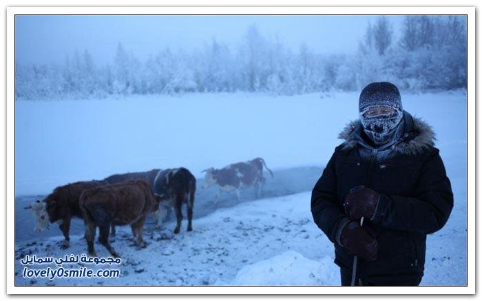 أبرد قرية العالم حرارتها درجة Coldest-village-in-the-world-22.jpg