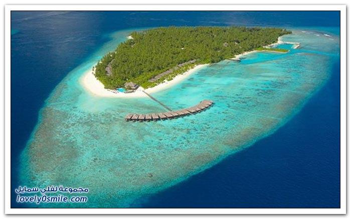 صور خلابة من جزر المالديف