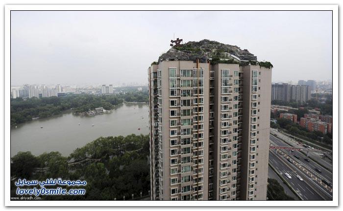 بيت من الصخور والأشجار على سقف بناية سكنية في الصين